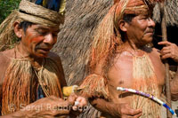 Yagua town. Blowguns, blowgun calls are greatly elongated, hand-crafted and used for hunting. A prepared yagua darts, which stored in a folded palm leaf, and are made of sharp stones and kapok fiber.