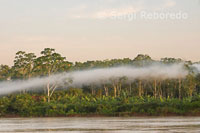 Morning mist in one of the tributaries of the Amazon to Iquitos about 40 miles near the town of Indiana.