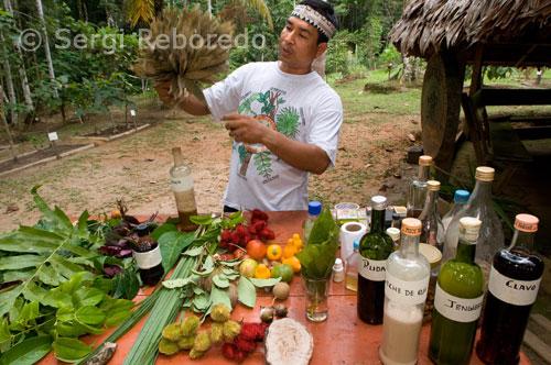 fotografias del amazonas peruano