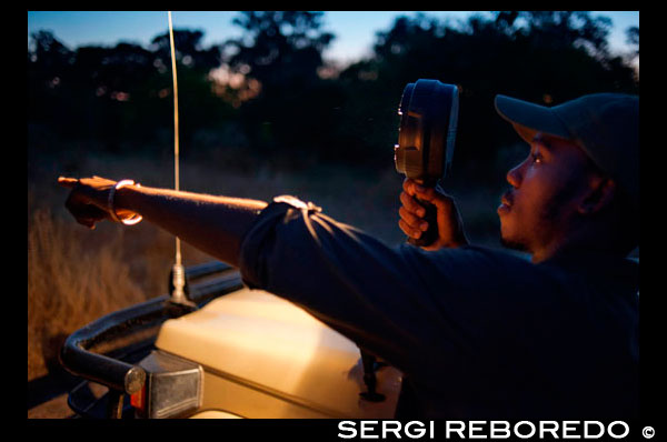 The guide is provided with a high-powered flashlight with looking safari animals during nocturnal Orient Express performs at Camp Khwai River Lodge by Orient Express in Botswana , within the Moremi Game Wildlife Reserve , Botswana. Botswana is a country with a stable political system and a natural beauty. From the Kalahari Desert to the Okavango Delta area will discover amazing places unique and stunning sunsets . The Delta is an area covered with water, with canals and islands where a large variety of wild animals . Near the border with Zimbabwe is Chobe Park , where in addition to several species of birds can watch the elephants come here in droves . The Chobe River is an amazing show and take a safari through its waters a great experience. Back in Zimbabwe , Victoria Falls offer an amazing show . You will need to take a walk in front of the falls to discover the beauty of this natural phenomenon. Hwange Park is the largest game reserve in Zimbabwe. This place is home to 105 mammal species , including 19 large herbivores and eight carnivores. On this trip you will enjoy the wildlife and landscapes of Africa.