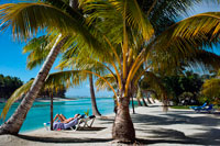 Aitutaki. Cook Island. Polynesia. South Pacific Ocean. Some tourists take a sun bath on the beach of Aitutaki Lagoon Resort & Spa Hotel. One big playground just outside your door. For families Aitutaki is really one big playground just outside the door of your accommodation. It is also very safe. Children, young and older, can spend hours enjoying the lagoon - above and below water - while they are swimming, kayaking, snorkelling and sailing. Back on land you can explore on bicycles, hike around some of the inland trails, go beachcombing and take a four-wheel drive safari. The pace of life is gentle here, there is only one television channel (unless you are staying somewhere with Sky satellite televison), and shopping is limited to the basics and some local crafts. Clams at the Research Centre. The Aitutaki Marine Research Centre is an interesting visit for all the family. Their projects include farming giant clams that are later moved to the lagoon and to aquariums overseas. There are also baby sea turtles. The research centre is open weekdays and will do tours. Several lagoon trips include a stop around the clams that have been relocated into the lagoon, and it is interesting to compare their beginnings back at the research station with their growth out in the lagoon If you go snorkelling with one of the boat tours you will also see some of the mature giant clams (Tridacnidae gigas) out in the lagoon.