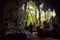 Atiu Island. Cook Island. Polynesia. South Pacific Ocean. Inside the impressive Kopeka Birds Caves in Atiu.  Cave tours are available to many coral limestone caves. All are spectacular and we list the most visited here. There are many others. If you are into caves you could easily spend all of your time on Atiu underground. The caves of Atiu show obvious signs of being caved out by the fresh water that flows off the volcanic acidic soil of Atiu and through the Makatea. With each change in sea level, tunnels are carved out at that level to allow the fresh water though. A present day example of this is the Tiroto Tunnel. There is another tunnel like this in Tengatangi district that can only be accessed from the sea. The caves listed here are caves that were carved out when the sea level was higher. Anataketake cave in particular is the home of the kopeka. A bird unique to Atiu, which is able to echo-locate in the dark cave to find its nest. Tiroto Tunnel connects Atiu's lake to the sea. It is possible to wade down this tunnel almost to the sea. The last part of the tunnel is underwater. You can tell you are close to the sea because the flow moves backwards and forwards with the wave action and because there is clean white sand underfoot. Wading this tunnel is an adventure. It is sometimes called the mud tunnel. Rima Rau burial cave is worth a visit. 'Rima' is five and 'Rau' is two hundred in the Atiu language. So Rima Rau means one thousand dead. This must be an exaggeration. It is more likely to be 50. There are many legends about who's bones lie in the cave. One legend tells of a famous battle, another a of cannibal feast, and yet another a story of revenge. Ask your guide or host to tell the stories.
