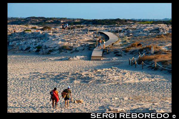 Sa Roqueta Beach and Ses Illetes Beach, Balearic Islands, Formentera, Spain. Couples walking in the sand.  Spain; Formentera; island; Ses Illetes; beach; sa roqueta; illetes; roqueta; coastline; marine; scene; outdors; sand; summer; balearic; nice; sea; boats; pretty; sunset; couple; couples; walk; walking; sand; beauty; calo; beach; beautiful; beauty; blue; coast; people; man; woman; romantic; europe; holiday; idyllic; isla; island; islands; islet; landmark; landscape; mediterranean; nature; ocean; outdoor; paradise; places; rock; rocky; san; scenic; sea; seascape; shallow; shore; sky; spain; stones; holiday; horizon; islands; length; look; med; mediterranean europe; platge; platja; playa; rear; rocks; rocky; rough; sand; sandy; sea; single; slim; spain; spanish; stand; summer; tourism; travel; vacation; view; watch; wave; sun; sunny; touristic; transparent; travel; turquoise; vacation; water; waves; white; balearic; Baleares; atrraction; destination; Europe; European; holiday; travel; islands; mediterranean; photos; place; spanish; sun; tourism; touristic; vacation; view; Balearics; beautiful; beauty; paradise; fun; happy; coastal; paradisiac; popular