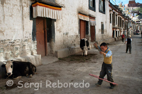 A child plays with hula hoop on the streets of the old town of Gyantse. Today this Gyantse lives with some prosperity by increasing influx of tourists and surprise the visitor with its impressive Pelkhor Chode Monastery and magnificent fortress (or Dzong) which located on a hill overlooking the entire city proud. Although we mentioned that it is a small town not forget that Gyantse is the third largest city in Tibet.
