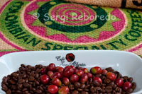 Different coffee beans, before and after roasting in the San Alberto. (Buenavista, Quindio). Café San Alberto, in order to ensure great taste and distinctive, that capitalizes on the best features of terroir, is produced under the requirements of the Fivefold Selection. This process was designed in the San Alberto. It is a manual process where each grain to be used for the preparation of roasted St. Albert goes through five stages of selection. Thus guarantees unbeatable tasting coffee, distinctive and consistent. Step 1: Collect ripe fruit at its ripest. Step 2: Manual selection and disposal of green fruits, overripe and defective. Step 3: Manual selection of healthy almonds and top quality for drying Step 4: Select green beans according to size Step 5: Selecting the best lot by trial cup, in which the coffee taster test to ensure that indeed the lot will be roasted faithful representation of the characteristics and attributes of the Café San Alberto. The thermal regime, governed by the altitude in Colombia associated with mountains rising over 5,000 meters high, allows the average temperature where coffee is grown in a favorable range vary from 18 ° to 24 ° C. Under these temperatures makes feasible the cultivation of coffee and prevents the occurrence of frost. Therefore, in the Colombian Coffee Region, temperatures are within the optimal range for growth of coffee, without actually experiencing extreme values (very hot or cold) to stop normal development functions. The contrasts in temperature during the day and temperature throughout the year also favor the generation of sugars and other compounds in coffee beans that develop during industrialization, valued attributes such as acidity and a balanced body.