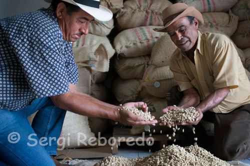 "Some workers at the Hacienda San Alberto coffee show dry coffee beans ready for roasting. (Buenavista, Quindio). The purpose of grinding is to reduce the toasted grain size to facilitate extraction of aromas and soluble compounds during preparation of the beverage. Thus, the contact time determines how much water-coffee coffee flavoring material will be removed from the coffee grounds. To avoid excessive under development or extraction of flavor components is necessary to establish the correct size of particles of ground coffee. This is how it is necessary to adjust the mill to ensure this effect. As a rule, prolonged preparation must be supplemented with larger particles (coarser grind) and shorter times with smaller particles (finer grind). Of course, the water quality has a major impact on the final taste of the drink. Water should be transparent and free from patent taints, they should seek to be free of pollutants, or substances such as chlorine, and the mineral content of calcium and magnesium give hardness to the water, are in median proportion (less to 150 ppm expressed as calcium carbonate CaCO3). In this sense, do not use water drawn from deep wells, or chlorinated water â ""€ aqueduct waters that have not been filtradasâ"" €. In general, the best water (to prevent taste alterations) are bottled. Water temperature during the preparation of the beverage affects the degree of extraction of flavor components of coffee from Colombia. Usually water is used as soon reaches its boiling point. Water at these temperatures releases the aromatic materials more quickly and allows a correct extraction of other soluble in a reasonable time. As a general rule, the temperature should be kept constant throughout the brewing cycle. The relationship between the amount of water per 500 grams of ground coffee used, will determine the density of the beverage and the ability to appreciate. Depending on the country can consume very diluted coffee or coffee concentrate. The following table details the suggested Colombia Coffee for typical consumption in countries like Colombia, northern Europe or North America."